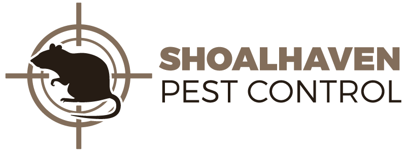 Pest Control in Nowra   Shoalhaven Pest Control